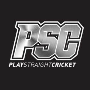 Play Straight Cricket
