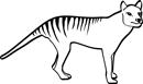 Thylacine Loyalty Points